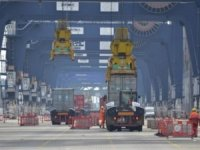 After Software Disruption, Felixstowe Works to Restore Service