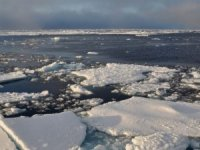 Putin Voices Support for LNG as Fuel in Arctic