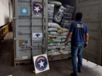 UN Program Organizes Crackdown on Containerized Smuggling