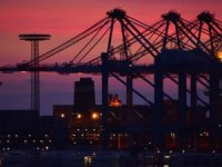 COSCO Shipping Ports Divests Stake in Several Terminals
