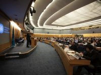 IMO Symposium: Ammonia and Hydrogen Are Fuels of the Future