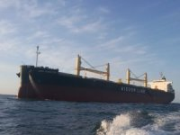 Wisdom Marine to Order Bulker Pair in China