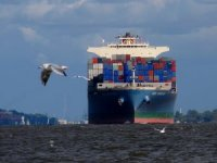 UN: Shipping Industry Needs a 'New Propulsion Revolution' for Zero-Emission Future