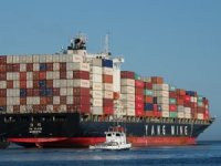 Yang Ming Suffers Wider Net Loss After Returning High-Cost Chartered Boxships