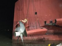 Golden Ray's Rudder and Propeller Removed