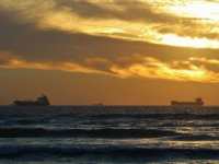 BIMCO: Low-Sulfur Fuel Sales Rise as Shipping Industry Responds to IMO 2020