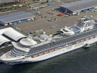 Coronavirus Could Pose Threat to Cruise Ship Credit Ratings