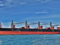 ​ Singaporean bulk carrier detained in Philippines for falsifying China visit dates