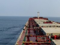 Oldendorff Carriers Hires Diana's Capesize