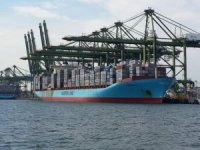 Container fleet to shrink with prices and rates on slow recovery from COVID-19