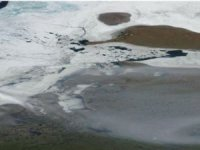 Record Temperatures and Record Low Sea Ice in Siberian Arctic