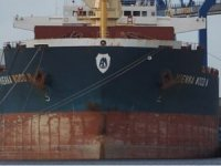 Crew of Bulker Vienna Wood Held at Batangas as Homicide Case Proceeds