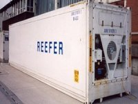 Reefer Shipping is Outpacing Dry Cargo and Growing Container Trade