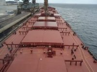 Diana Shipping seals capesize charter with NYK