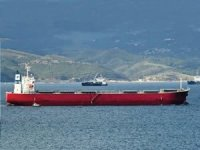 Pavimar grows fleet to 12 with capesize acquisition